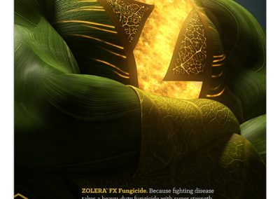 ZOLERA FX Print Ad